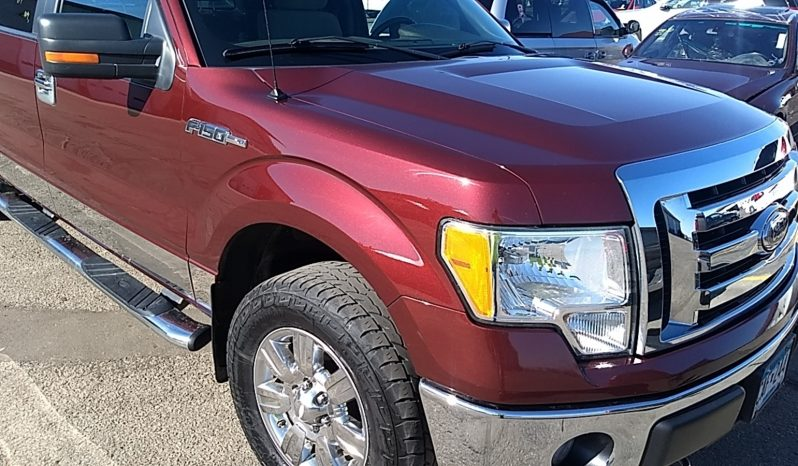 2009 FORD F150 SUPERCREW XLT 4X4 full
